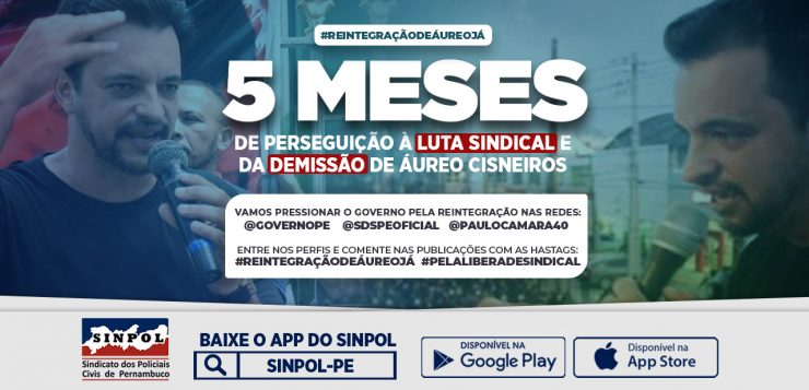 card_5meses-site